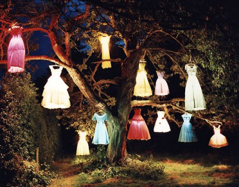 dresses in tree