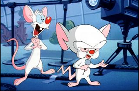 pinky_and_the_brain