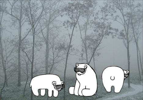cool bears