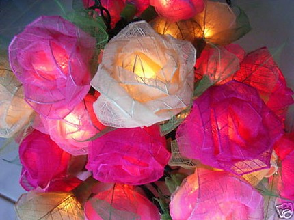 rose lights